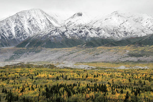 Alaska Art Print featuring the photograph Fall in Wrangell - St. Elias by Marla Craven