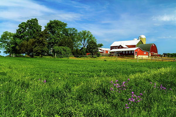 Agriculture Art Print featuring the photograph Farm In Summer by Chuck De La Rosa