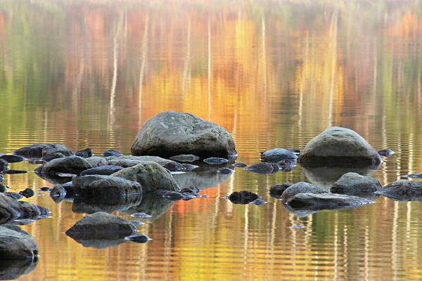 Rocks Art Print featuring the photograph Floating Rocks by Marla Craven