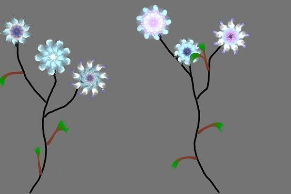 Digital Painting Art Print featuring the digital art Fractal Floral 10-21-09 by David Lane