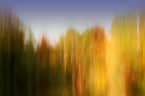 Abstract Art Print featuring the photograph Last November at Duke by Margaret Denny