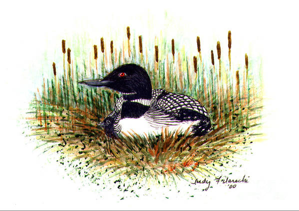 Loon Art Print featuring the painting Loon and Baby Judy Filarecki Watercolor by Judy Filarecki