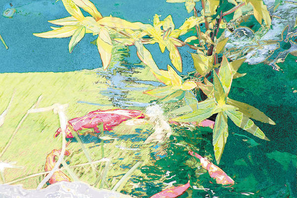 Koi Art Print featuring the photograph Marry-Go-Round Kio In The Spring-May Day by Judy Loper