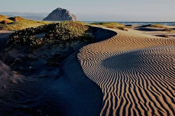Nature Art Print featuring the photograph Morro Strand State Beach, California by Zayne Diamond Photographic