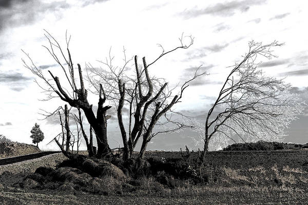 Photograph Art Print featuring the photograph My Home Town-After The Storm by Robert Litewka