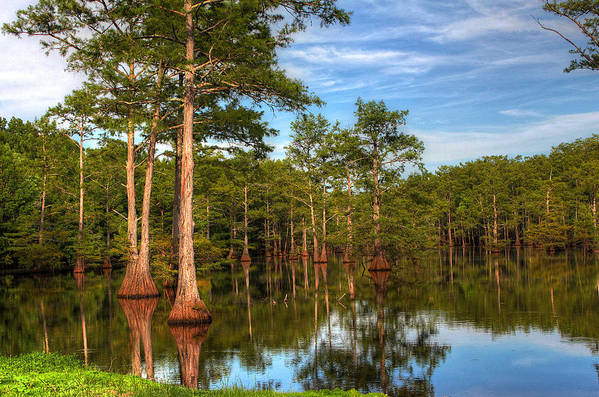 Quiet Art Print featuring the photograph Quiet Afternoon At The Bayou by Ester McGuire