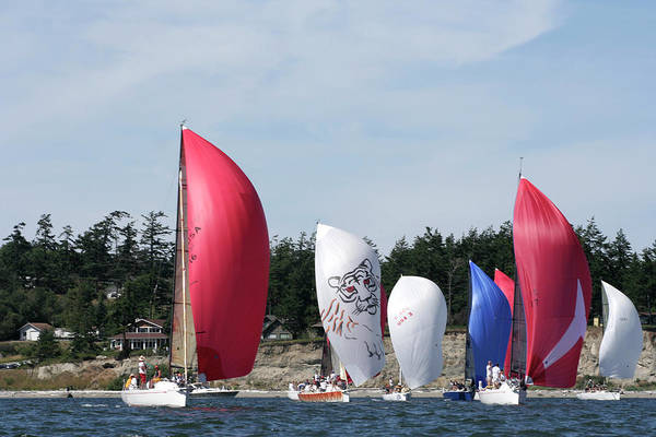 Sailing Art Print featuring the photograph Race Week 2007 BO1210 by Mary Gaines