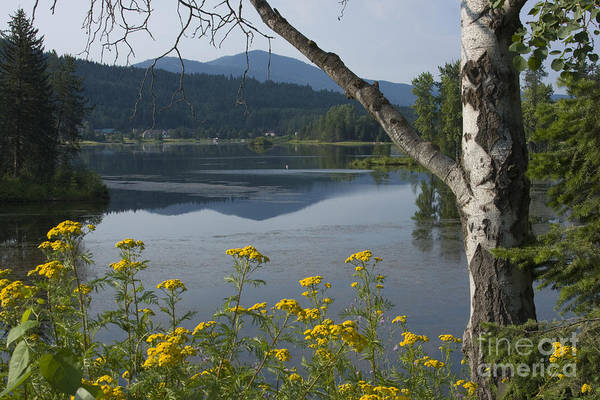 Landscape Art Print featuring the photograph Reflections of Summer by Idaho Scenic Images Linda Lantzy