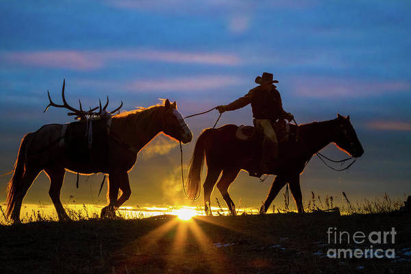 America Art Print featuring the photograph Returning Home by Inge Johnsson
