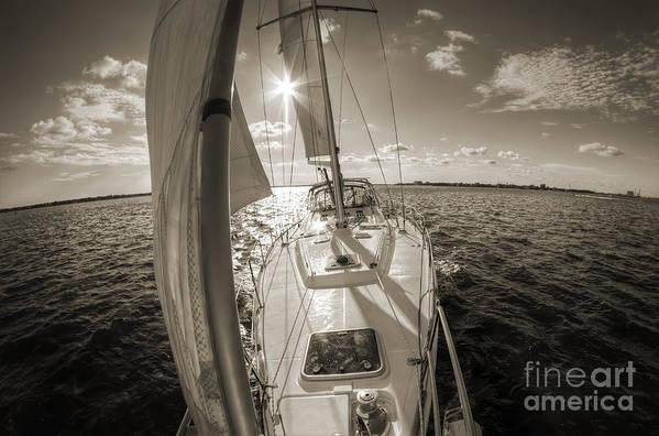 Sailboat Sailing Charleston South Carolina Art Print featuring the photograph Sailboat Sailing Charleston South Carolina by Dustin K Ryan