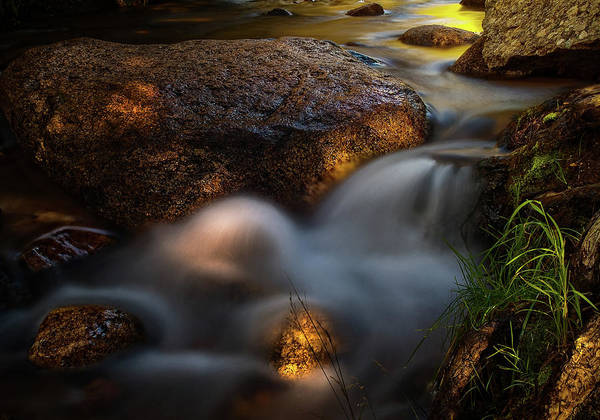 Water Art Print featuring the photograph Spirit Of Life by Tim Reaves