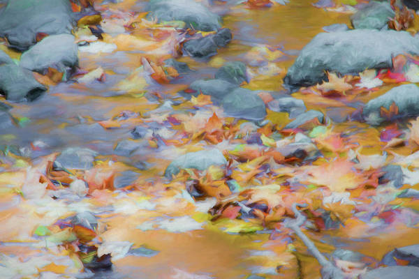 Abstracts Art Print featuring the photograph The Lightness of Autumn by Marilyn Cornwell