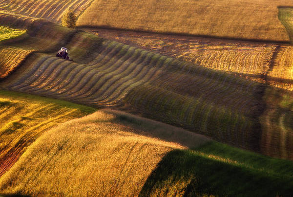 Field Art Print featuring the photograph Tractor by Fproject - Przemyslaw Kruk