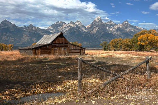 Grand Tetons Art Print featuring the photograph Withstanding The Test Of Time by Sandra Bronstein