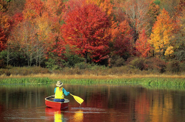 Tranquility Art Print featuring the photograph A Person Canoeing In Pennsylvania by Beck Photography