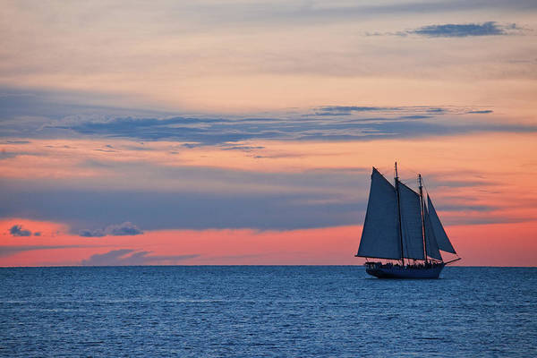Sailboat Art Print featuring the photograph Sailboat At Sunset by Thepalmer