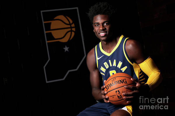 Media Day Art Print featuring the photograph 2018-19 Indiana Pacers Media Day by Ron Hoskins