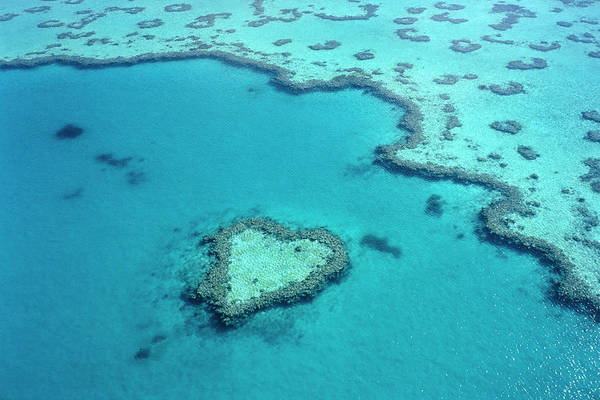 Seascape Art Print featuring the photograph Aerial Of Heart-shaped Reef At Hardy by Holger Leue