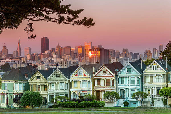 San Francisco Art Print featuring the photograph Alamo Square And Painted Ladies by Spondylolithesis