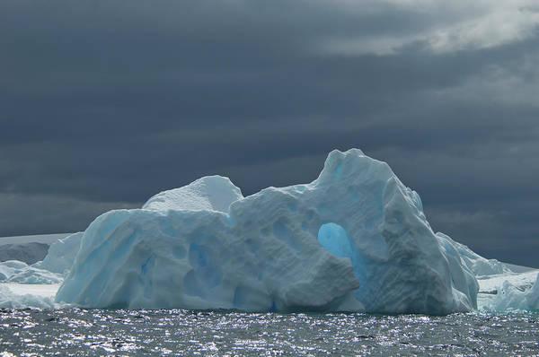 Iceberg Art Print featuring the photograph Iceberg Along The Antarctic Peninsula by Mint Images - David Schultz