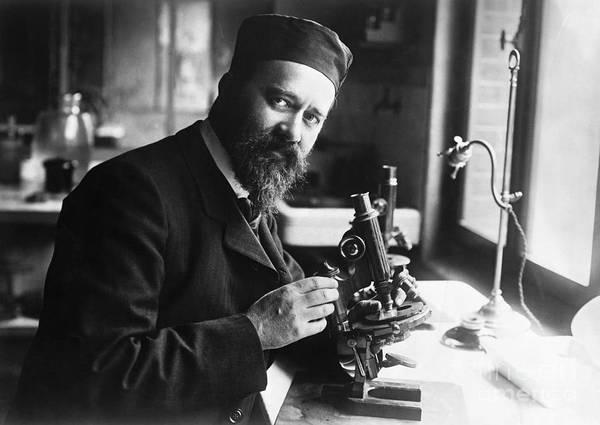 Microscope Art Print featuring the photograph Albert Calmette Working With Microscope by Bettmann