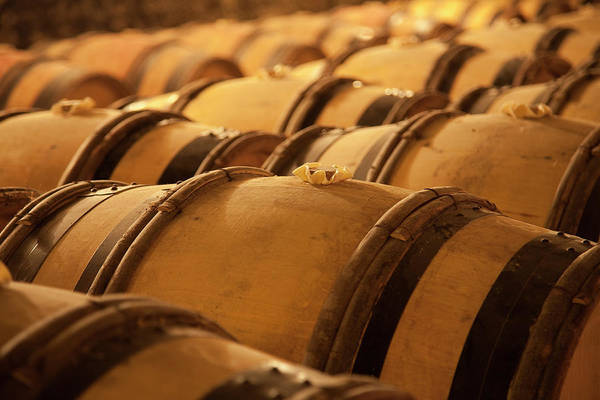 Fermenting Art Print featuring the photograph An Old Wine Cellar Full Of Barrels by Brasil2