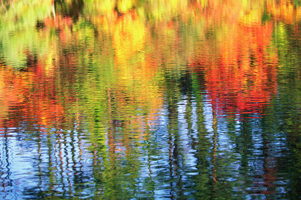 Outdoors Art Print featuring the photograph Autumn Color Reflection by Ooyoo