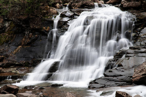 Waterfall Art Print featuring the photograph Bastion Falls by Tom Romeo