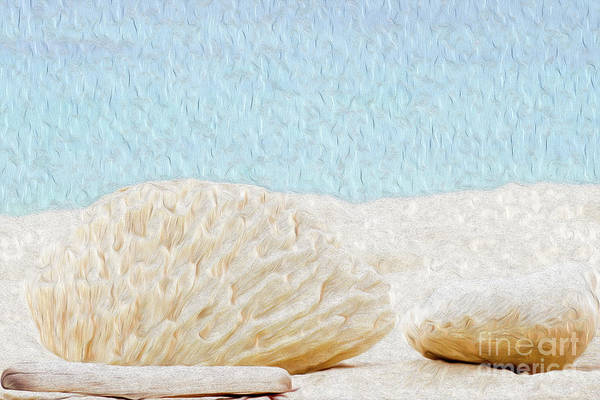 Grand Cayman Art Print featuring the digital art Beach Rocks at Seven Mile Beach in Grand Cayman by Kenneth Montgomery