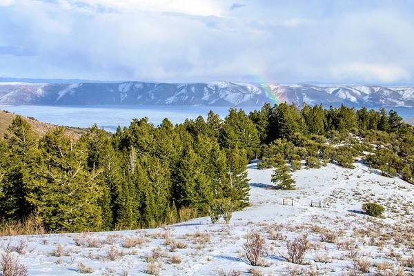 Tranquility Art Print featuring the photograph Bear Lake Scenic Byway by ©anitaburke