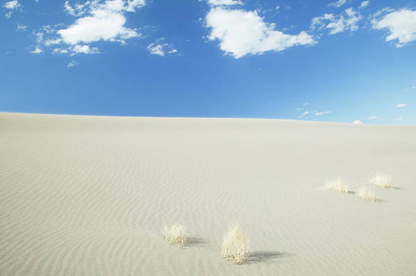 Sand Dune Art Print featuring the photograph Blue Sky Over Sand Dune by Bryan Mullennix