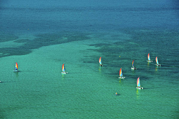 Scenics Art Print featuring the photograph Catamarans, Catseye Bay, Hamilton by Robin Smith