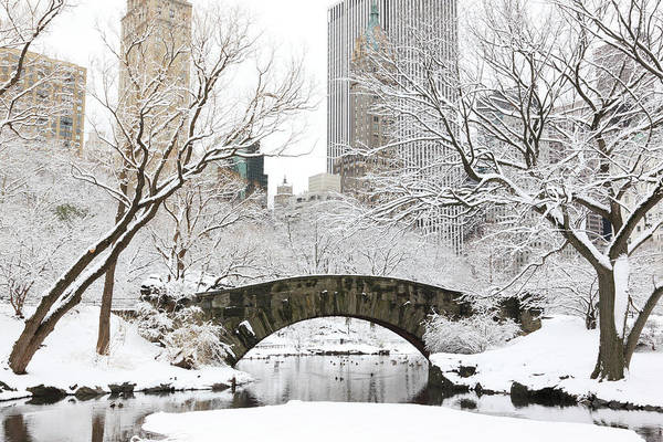 Snow Art Print featuring the photograph Central Park, New York by Veni