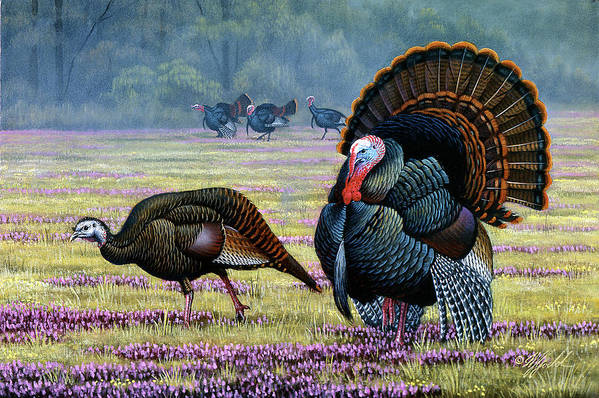 Wild Turkeys Art Print featuring the painting Commanding Attention by Wilhelm Goebel