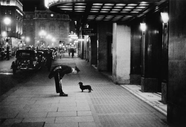 Piccadilly Circus Art Print featuring the photograph Commissionaires Dog by Kurt Hutton