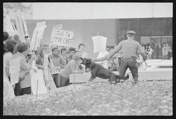 Crowd Art Print featuring the photograph Crowd Protesting President Nixon by Bettmann
