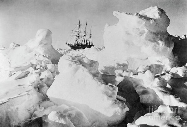 1914-17 Imperial Trans-antarctic Expedition Art Print featuring the photograph Ernest Shackletons Ship Endurance by Bettmann