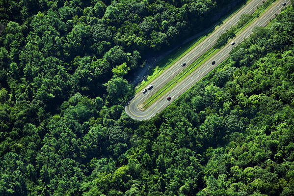 The End Art Print featuring the photograph Highway U-turn In Forest by Thomas Jackson