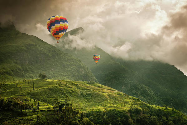 Tranquility Art Print featuring the photograph Hot Air Balloons Over Tea Plantations by Nicolo Sertorio