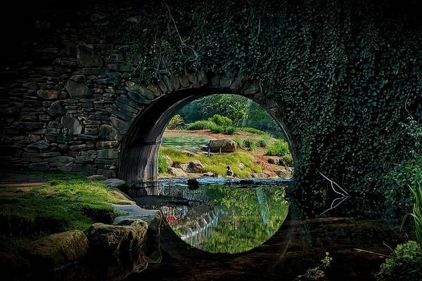 Bridge Art Print featuring the photograph In the Middle of A Reflection by Zayne Diamond Photographic