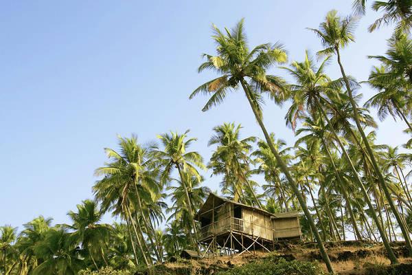 Scenics Art Print featuring the photograph India, Goa, Beach Huts On Palolem by Sydney James