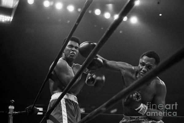 Joe Frazier Art Print featuring the photograph Joe Frazier Punches Muhammad Ali by Bettmann