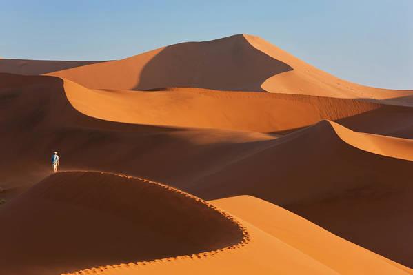 Shadow Art Print featuring the photograph Man Climbing Sand Dunes, Namib Desert by Peter Adams