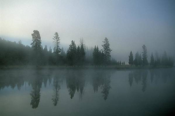 Mystery Art Print featuring the photograph Morning Fog Over Yellowstone River by Design Pics/natural Selection Robert Cable