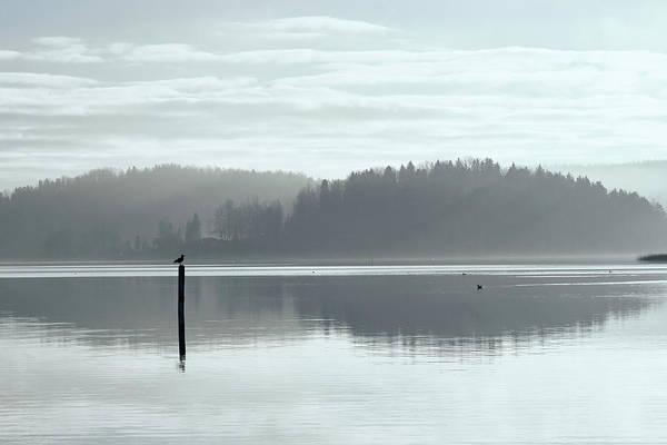 Finland Art Print featuring the photograph November Light. Morning Haze. by Jouko Lehto
