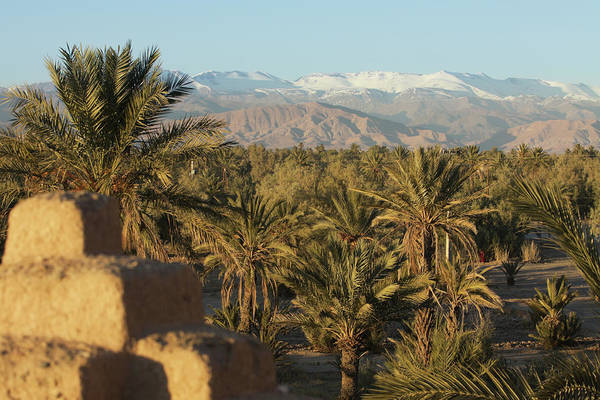 Scenics Art Print featuring the photograph Palm Trees, Mountains And Kasbah by Edenexposed