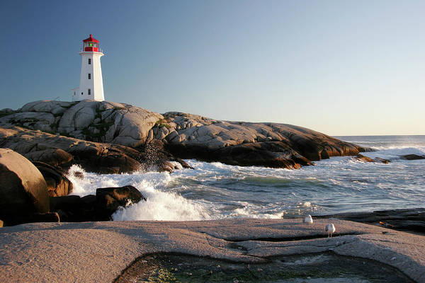 Water's Edge Art Print featuring the photograph Peggys Cove Lighthouse & Waves by Cworthy
