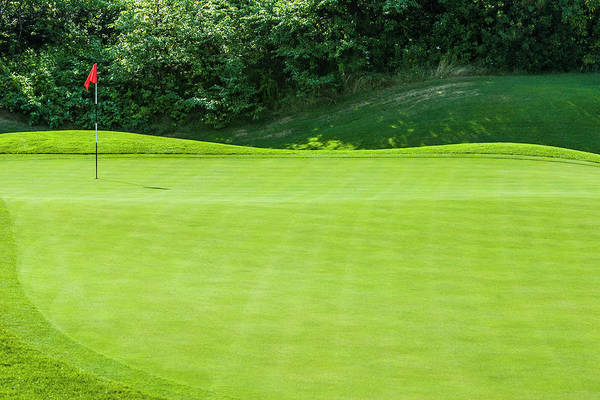 The End Art Print featuring the photograph Putting Green And Flag At A Golf Course by Stuart Dee