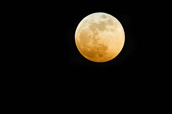 Shadow Art Print featuring the photograph Red Moon by Stevedangers