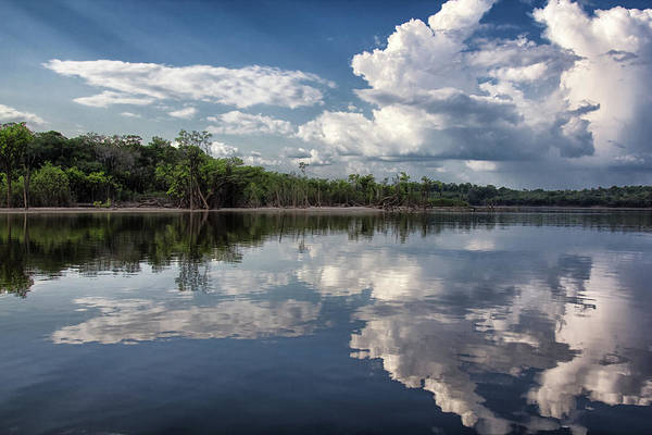 Scenics Art Print featuring the photograph Reflections In Amazon River by By Kim Schandorff